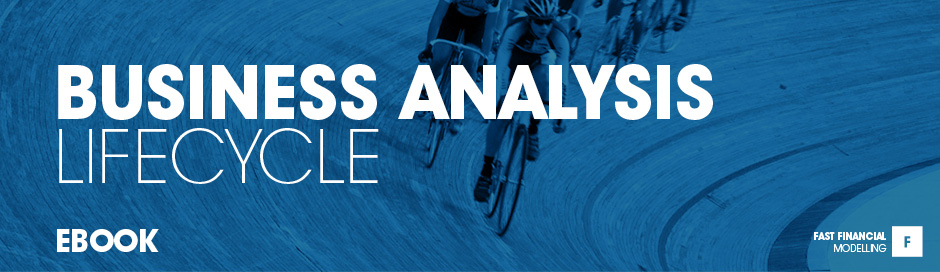 Business Analysis Lifecycle ebook